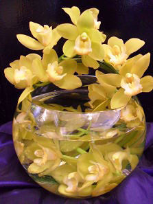 Orchids in Fish Bowl Design Corporate