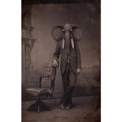 Elephant Man - Fine Art - Thirteenth Floor