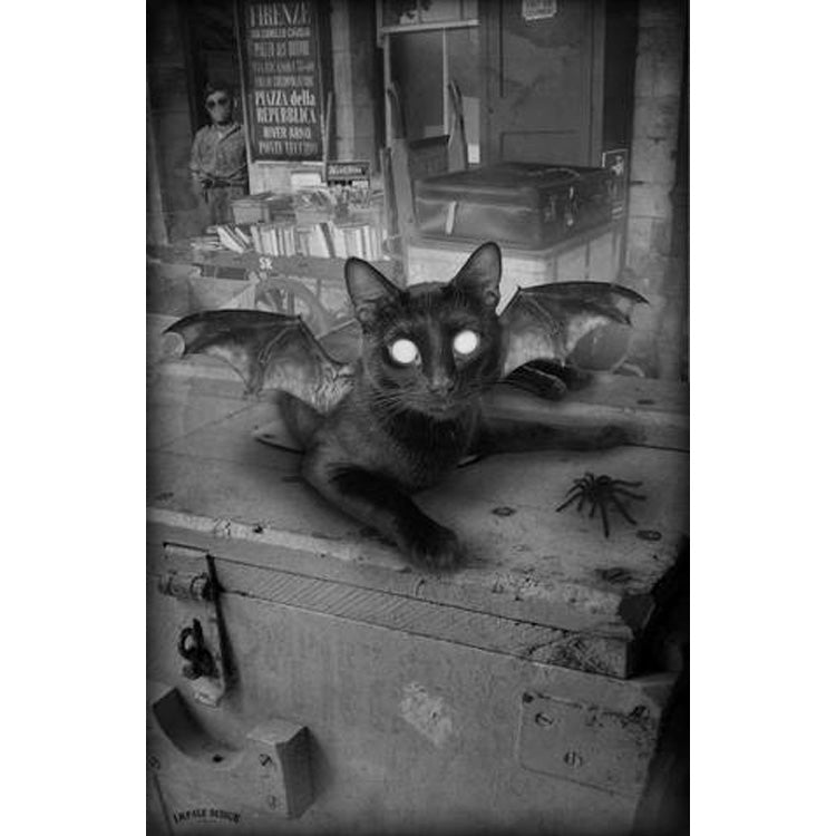 Kitty Bat (Black & White)