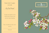 ESSENTIAL OIL GIFT CARD - Petal and Stem