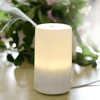 Diffuser Kit with Single Essential Oils and Diffuser Blends - Petal and Stem