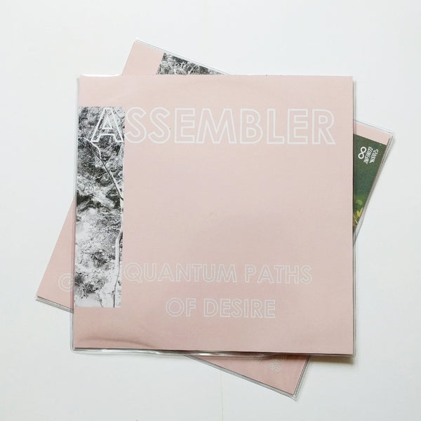 "Assembler ""Quantum Paths of Desire"""