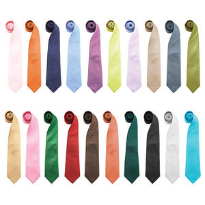 Premier Fashion Clip-On Tie - peterdrew.com  - 1