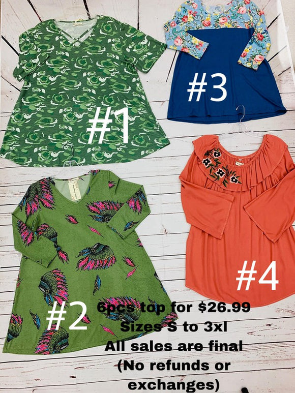 6pcs tops for $26.99 sizes s to 3xl all sales are final (no refunds or exchanges)