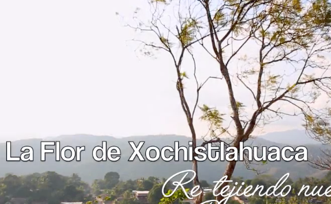Help Renovate the Studio of La Flor de Xochistlahuaca.
