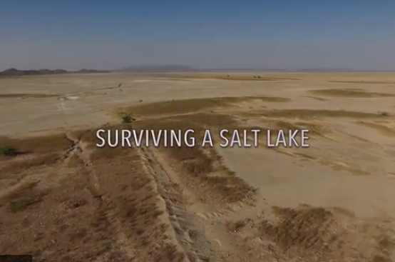Surviving a Salt Lake
