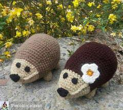 The Color Caravan Hand Crocheted Animals - Hedgehog Couple