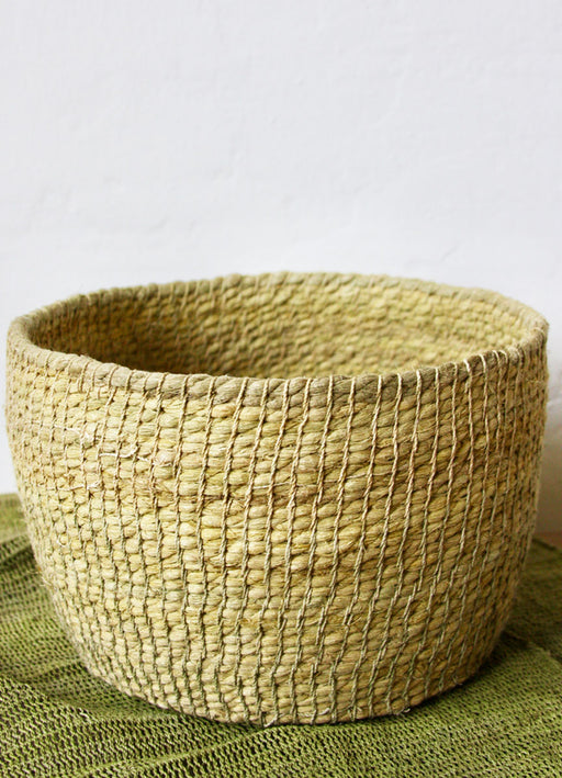 Chaguar Basket (6 inches deep) - Dyed with Palo Santo Leaves - Wheat & Tint of Green