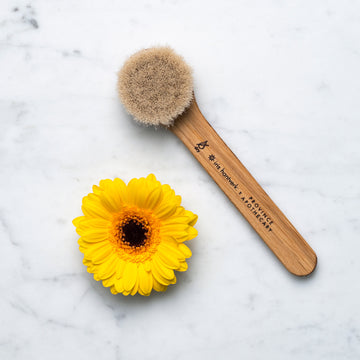 Fair trade dry brush with sunflower beside it