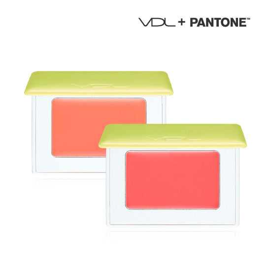 [VDL] Expert Color Cheek Book Mono (PANTONE17)