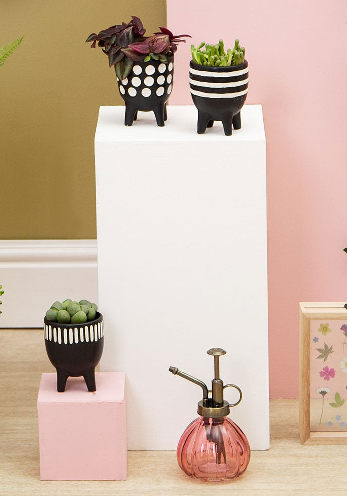 Little Planters on Legs (Set of 3)