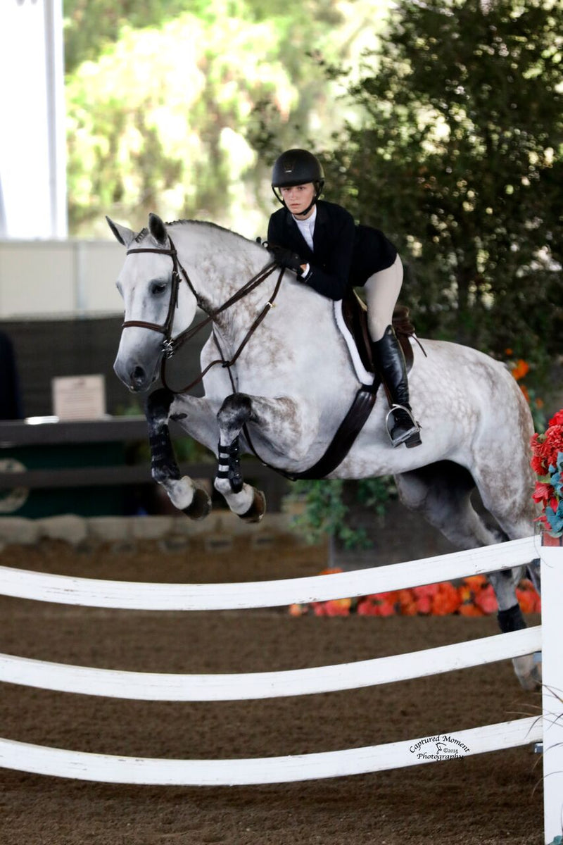 Lease Own Show Concord Equestrian Center