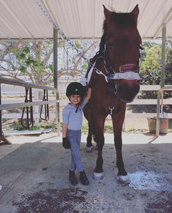 Pony Paint & Spa Experience - Concord Equestrian Center