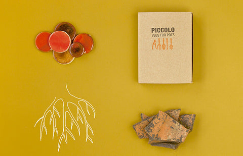 Bulbo Semi Collezione Arancio By Veg For Pots