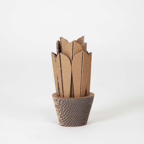 Vaso In Cartone Agave Small CactusHome Cardboard3d