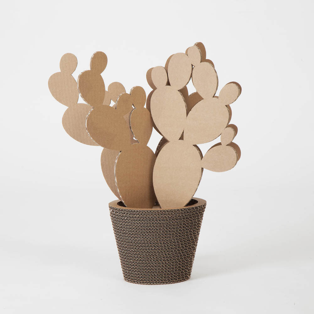 Vaso In Cartone Fico D'India Medium NextMaterials CactusHome