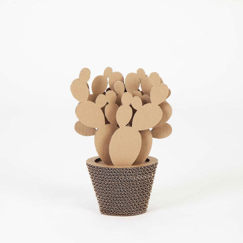 Vaso In Cartone Fico D'India Small NextMaterials CactusHome