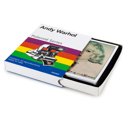 Kidrobot x Andy Warhol - Warhol Polaroids - Collect and Display