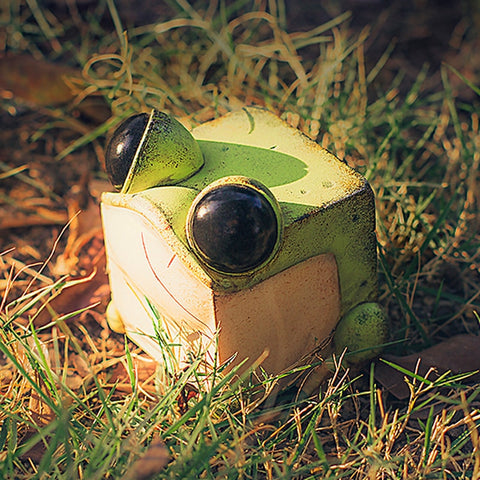 Sank Toys - Cube Frog Green (CUBE Series)