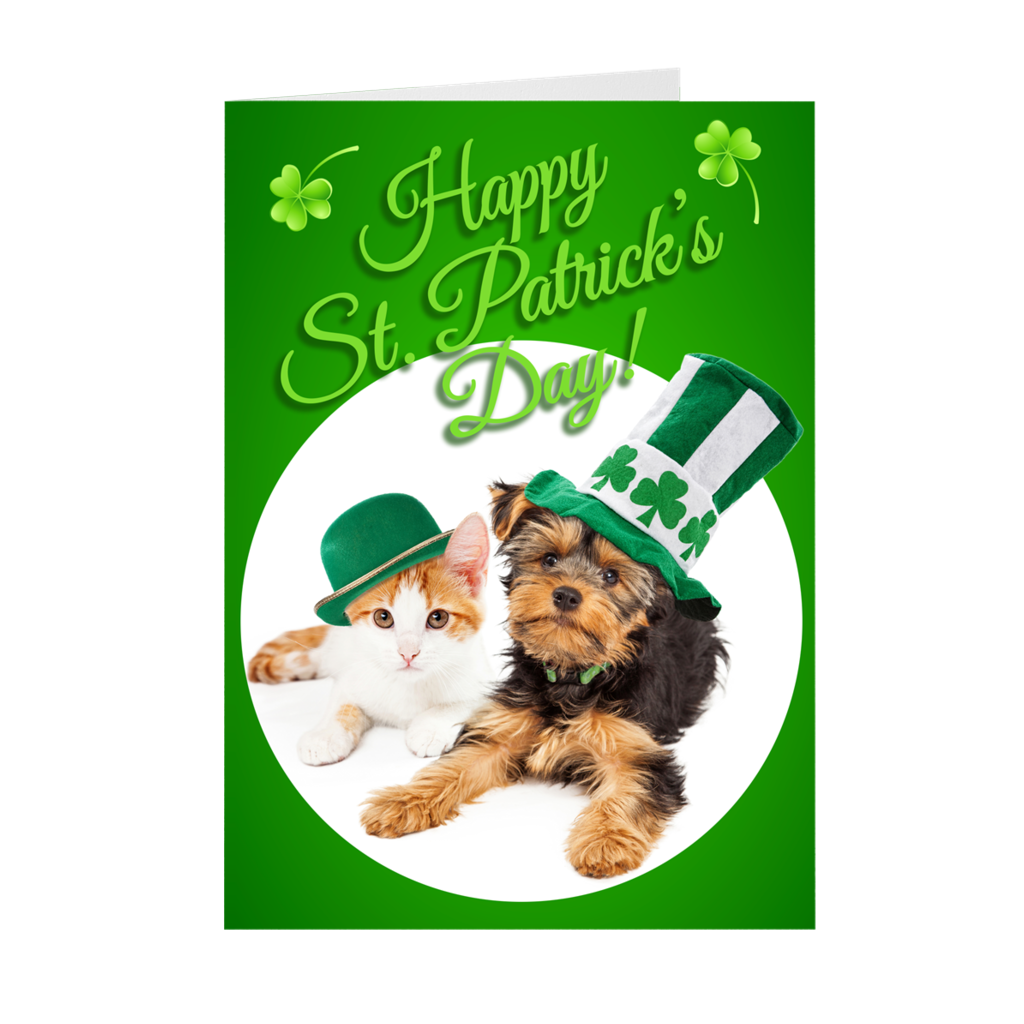 Cat and Dog - Animals - St. Patrick's Day Greeting Card