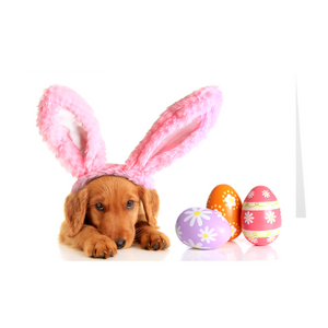 Some Bunny Loves You - Dog - Easter Greeting Card