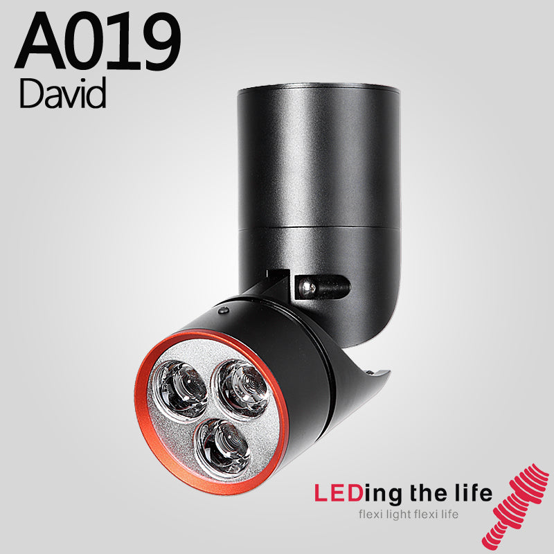 A019 David LED focus surface mounted spotlight for home lighting