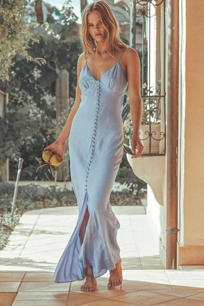 DREAMSCAPE MAXI DRESS