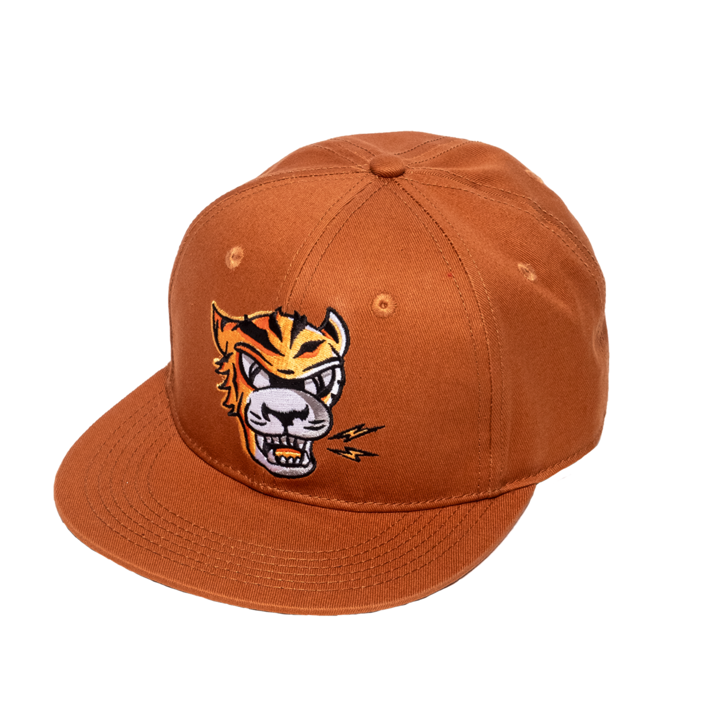 Eye of the Tiger Hip Hop Cap
