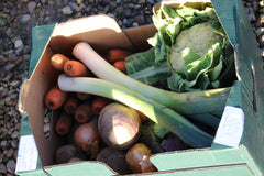 Naturally Grown Mini Veg Box