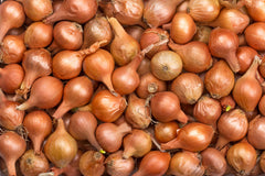 Bag of Onions [1kg]