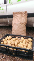 Large bag of Fresh British Potatoes