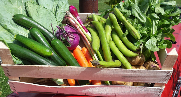 Naturally Grown Standard Veg Box