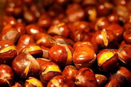Fresh Chestnuts ready for cooking for Christmas
