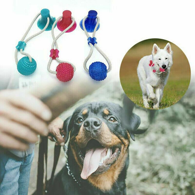 Multifunction Pet Molar Bite Toy - WowGoBuy