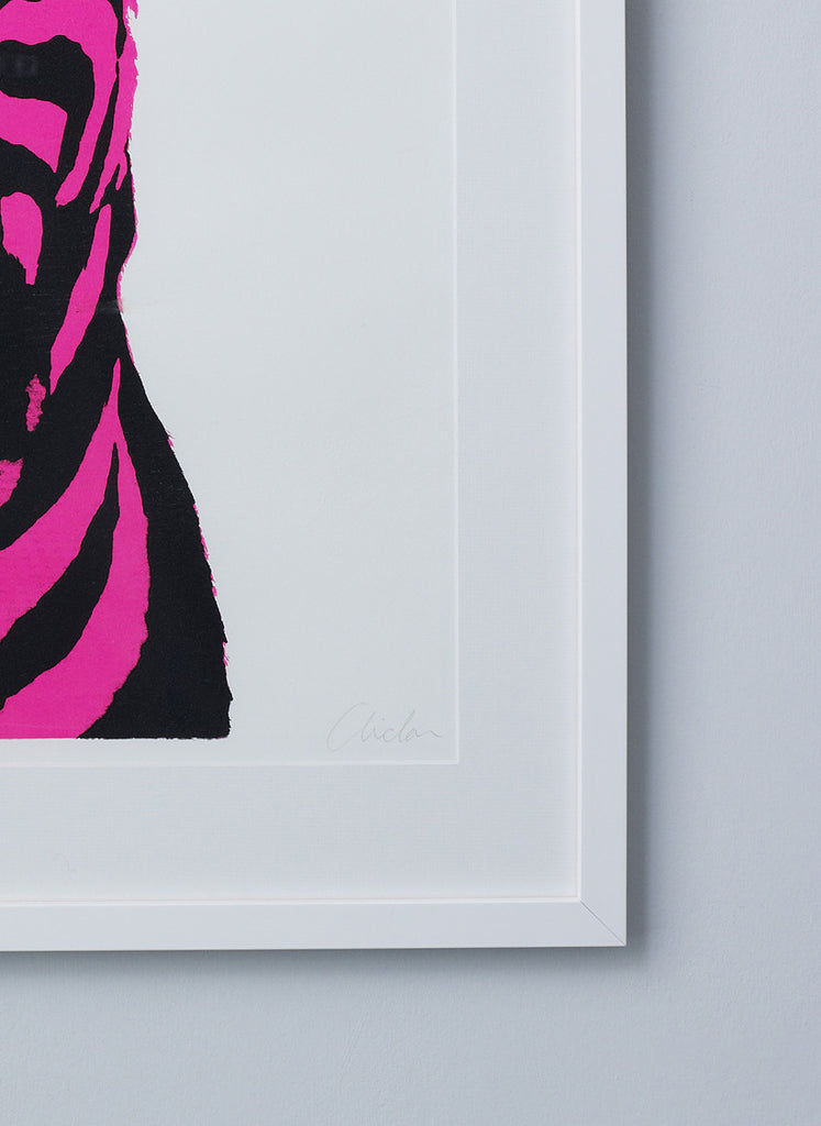 Pink Zebra Screen Print