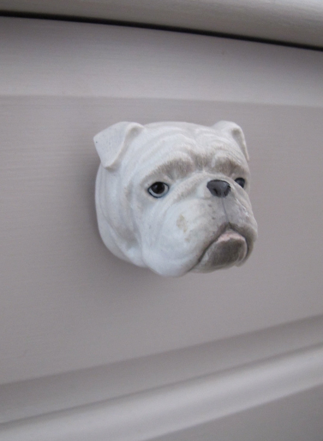 Bulldog Head Doorknob