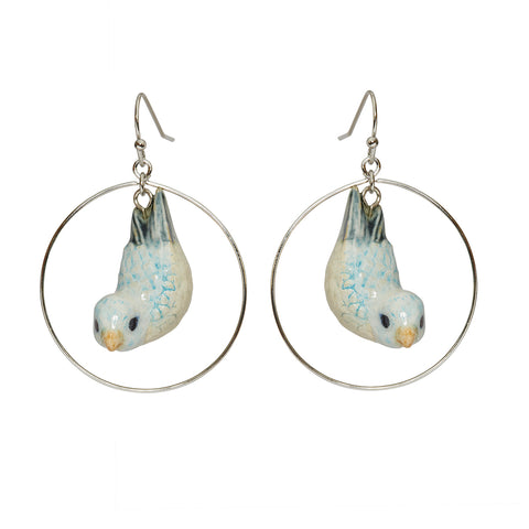 Blue Parrotlet Round Drop Earrings