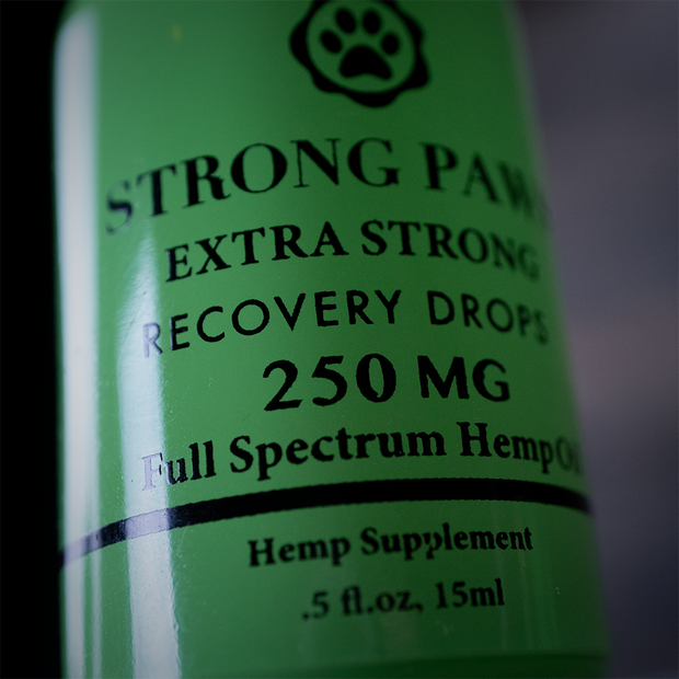 Strong Paws Recovery Drops - 250mg