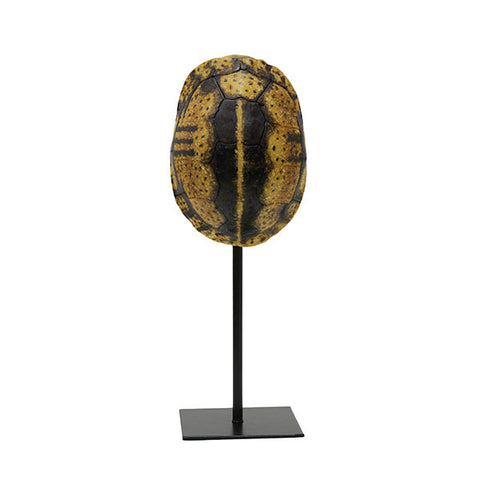 Yellow faux turtle shell on stand