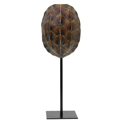 Brown faux turtle shell on stand