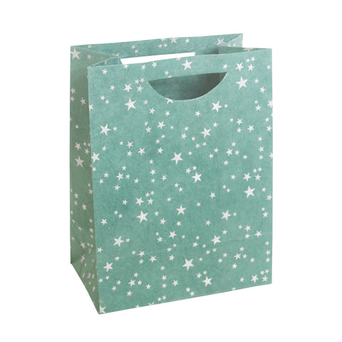 Large Gift Bag - Silver Stars on Green