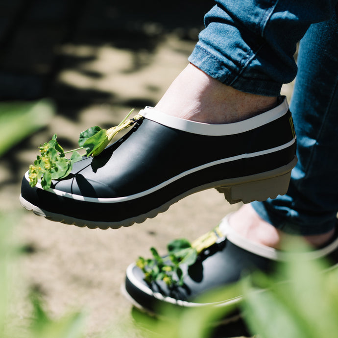 clog in black with foliage