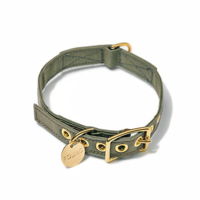 Dog Collar - Olive Cotton Canvas - Found My Animal - NZ Stockist - Paper Plane - Pets - Collars