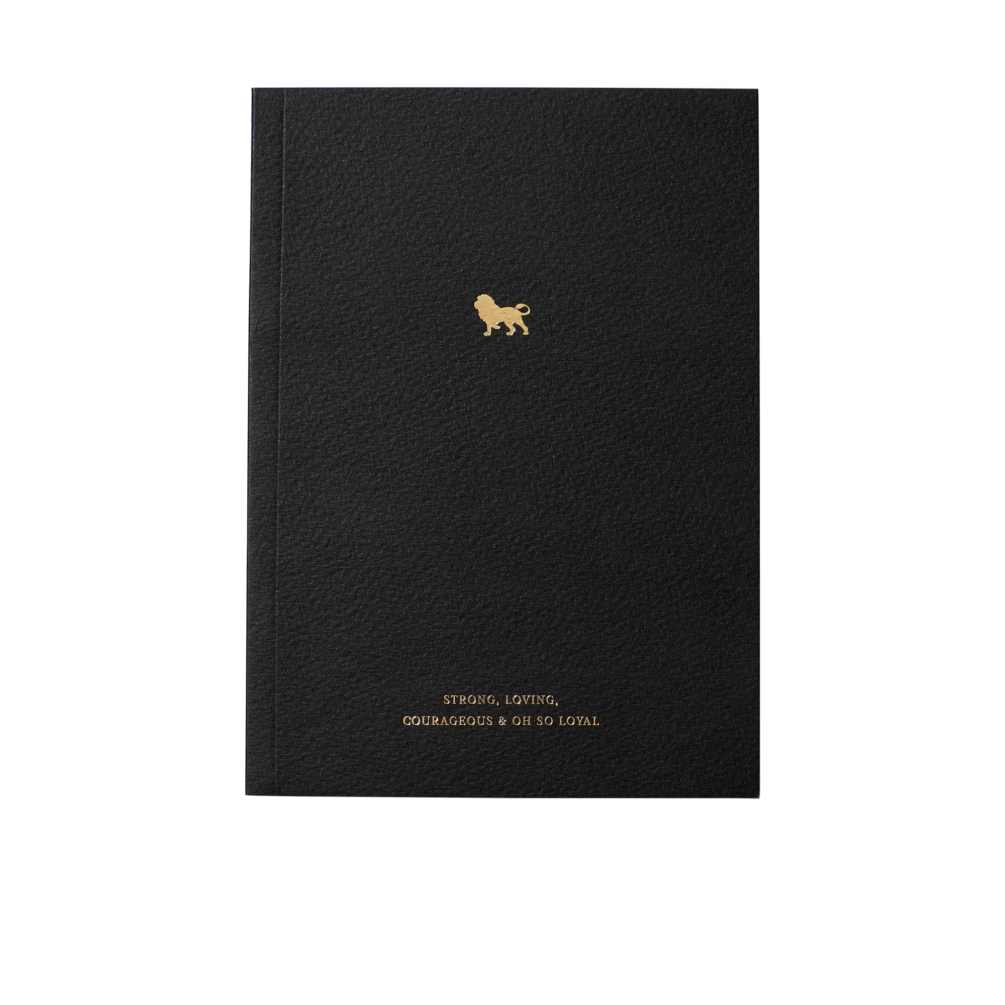 An Organised Life - Zodiac Notebooks - Paper Plane - NZ Stockist