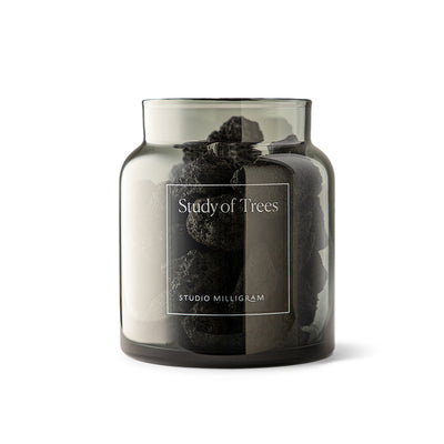 Scented Volcanic Rock Set - Study of Trees