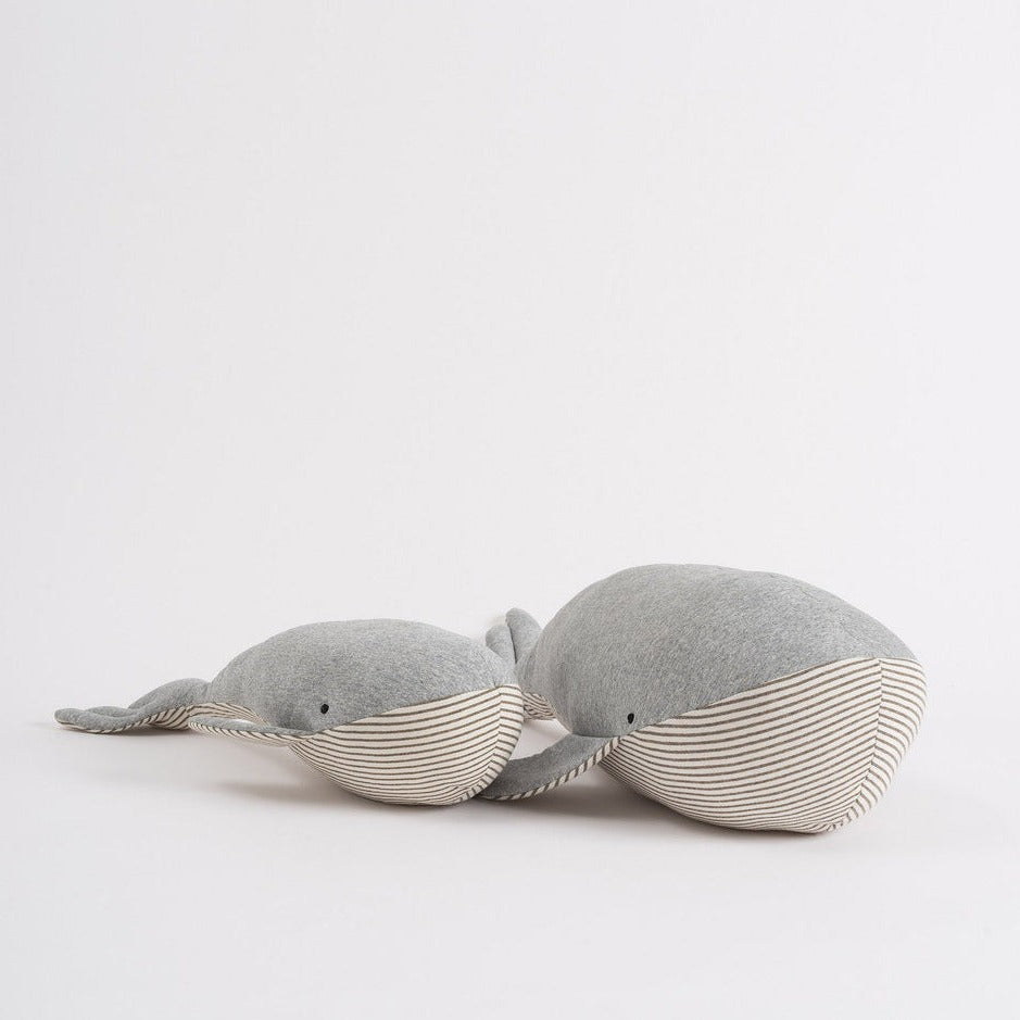 Baby Wilfred the Whale - Citta Design - Mt Maunganui Stockist - Paper Plane