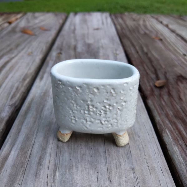 White Succulent Pot withFeet