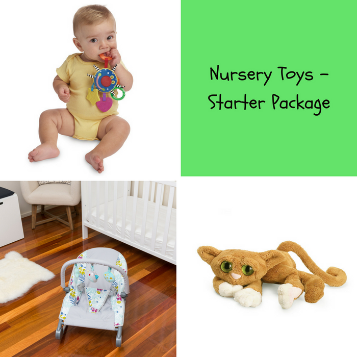 Nursery Toys - Starter Package