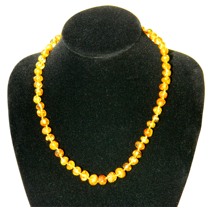 Baltic Amber Adult Necklace - Honey
