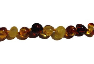 Baltic Amber Adult Necklace - Multicolour